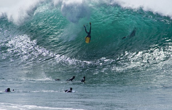 the wedge surf