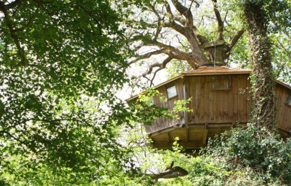 cabanes-dans-les-arbres-pradan-3