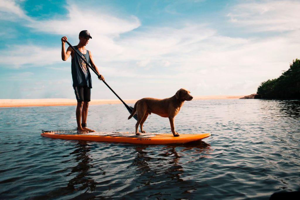 homme sur paddle avec son chien, comment rincer son paddle après utilisation ?